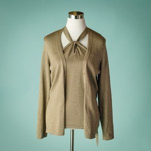 Ann Taylor M Metallic Sweater Set